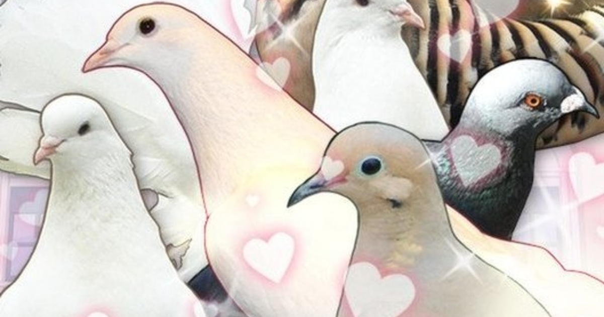 Hatoful boyfriend a pigeon dating sim download english. why do guys keep their online dating profiles up.