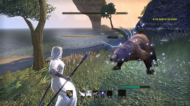 The Elder Scrolls Online Crown Store Will Sell You a Wedding Dress, Horse