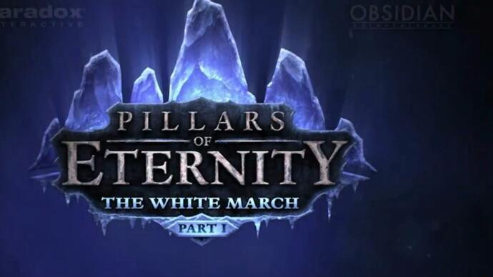 Pillars of Eternity expansion The White March - Part 1announced