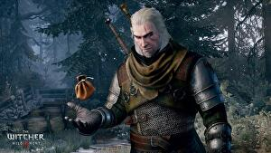 Witcher 3 coins