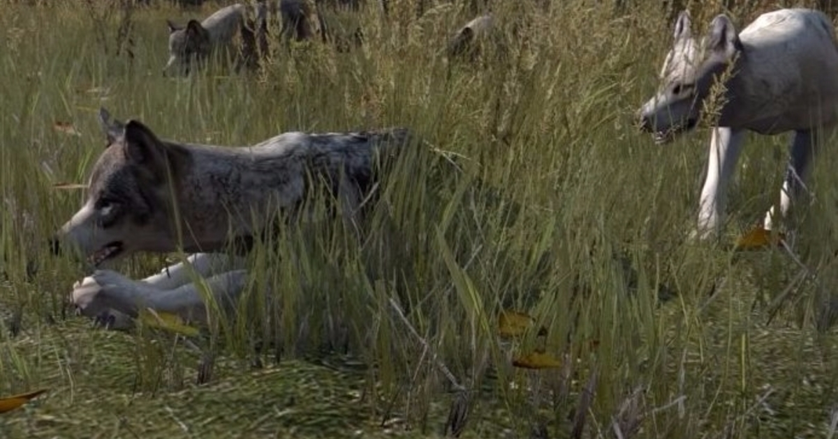 New Dayz Console Release Date Release, Reviews and Models on ...