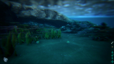 Depth of field and chromatic aberration are used to enhance the look of underwater scenes. Here, these effects are deployed so that long distance visibility is limited, while the environment takes on a smooth distorted appearance.