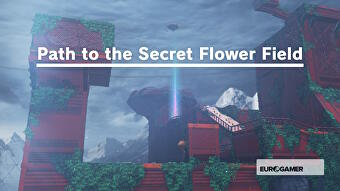 Super Mario Odyssey Pass To The Secret Flower Field And Defend The