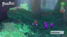 SS_coins_wooded_05