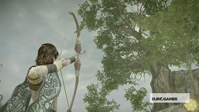Shadow of the Colossus lizards, fruit trees, health and