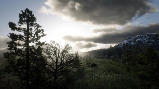 Red Dead Redemption 2 analysis: a once-in-a-generation