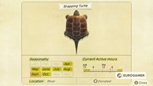 Animal_Crossing_Snapping_Turtle_page