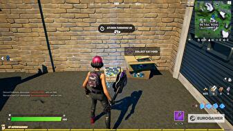 fortnite_collect_cat_food_2