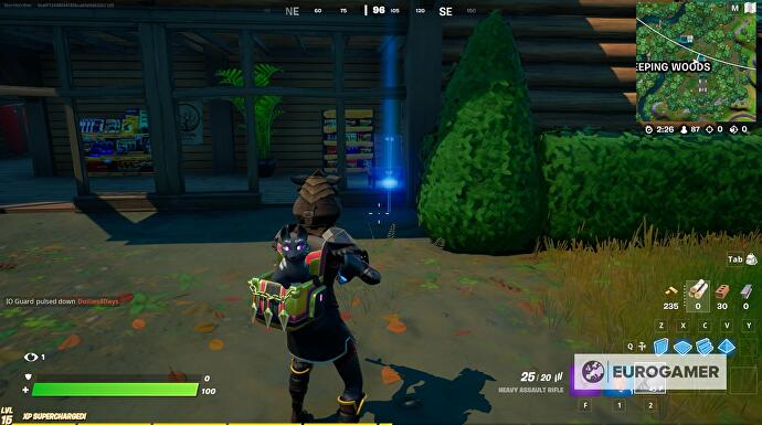 Fortnite_Weeping_Woods_Missing_Person_Posters_3
