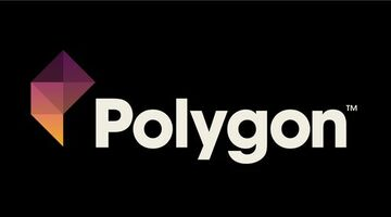 Vox Games becomes Polygon