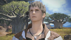 There's no increase in texture quality or detail when playing Final Fantasy 14: A Realm Reborn in 1080p or higher resolutions, but images do appear sharper and the shimmering caused by the limited FXAA coverage is slightly reduced.