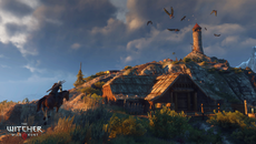The_Witcher_3_Wild_Hunt_Don___t_feed_the_birds__it_only_encourages_them