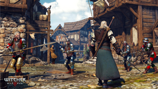 The_Witcher_3_Wild_Hunt_Halberds__really_now