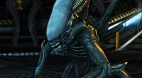 AVP: Evolution Preview