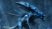 AVP: Evolution iPad Review