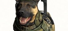 Call of Doggie: Ghosts, the CoD game we always wanted