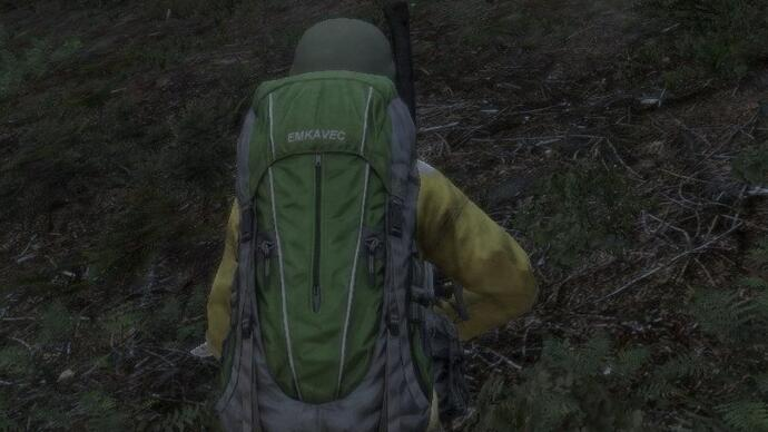 DayZ announced for PS4
