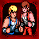Double Dragon Trilogy packshot