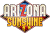 Packshot for Arizona Sunshine on PC
