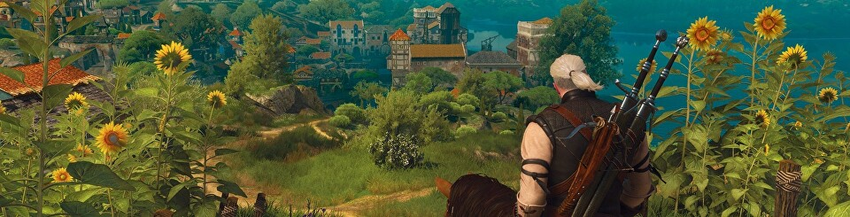 Performance analysis the witcher 3 blood and wine eurogamer net
