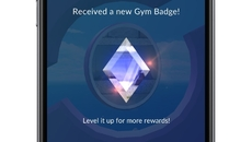 A look at new Gym Badges.