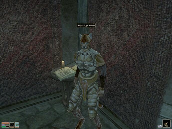 Broken dragons: In praise of Morrowind, a game about game