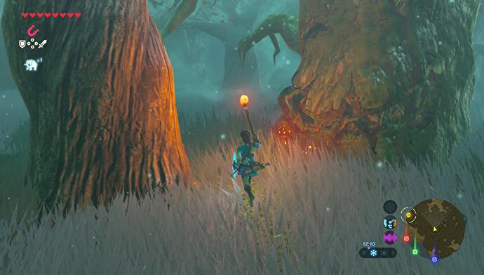 Zelda: Breath of the Wild - Lost Woods route directions and
