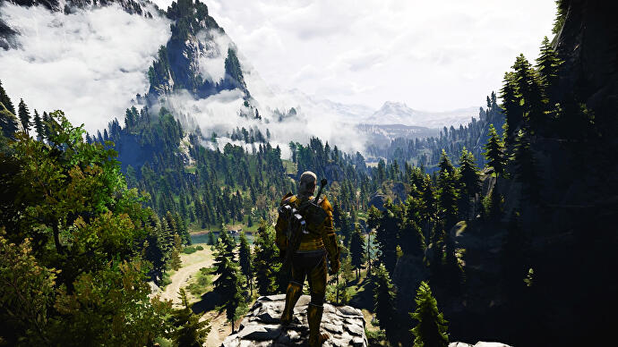 We asked a landscape designer to analyse The Witcher 3, Mass