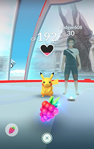 pokemon-go-gym-3
