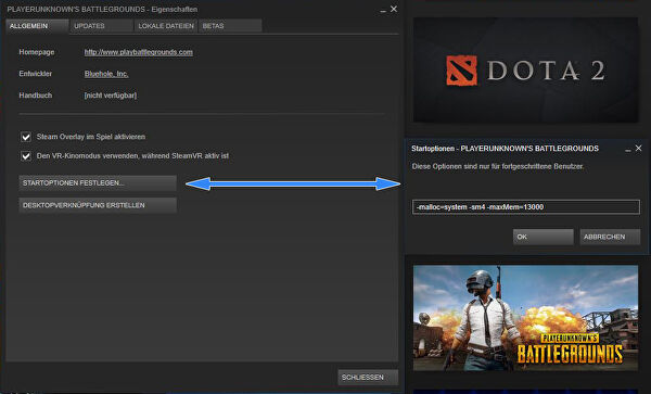 Steam mehrere startoptionen festlegen vba
