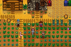 stardew valley multiplayer how to connect to lan