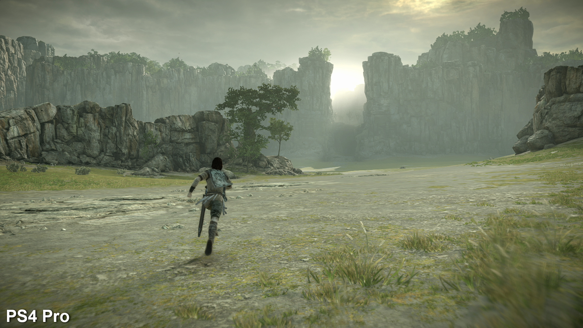The Making Of Shadow Of The Colossus On Ps4 Eurogamer Net