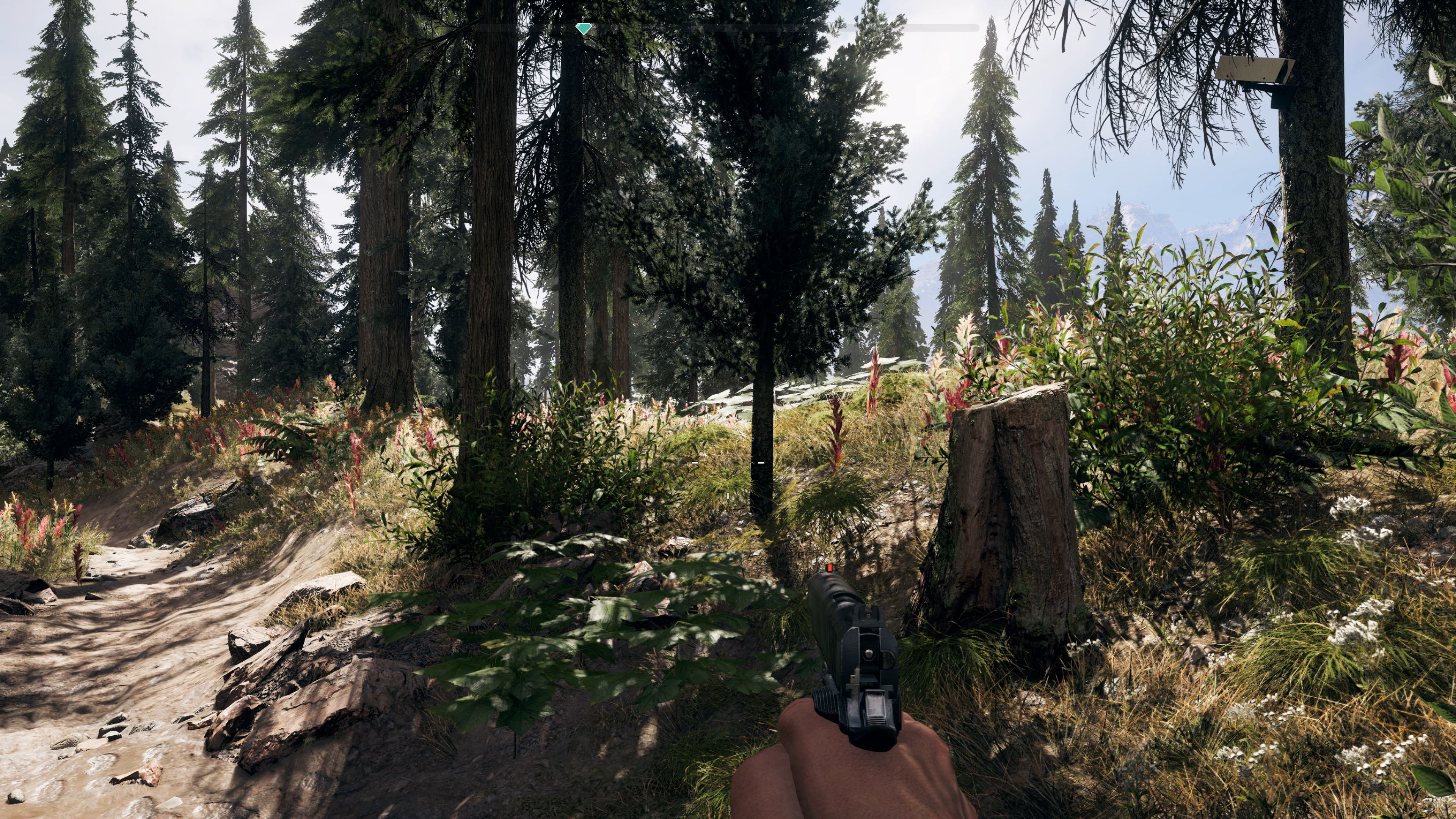 Far Cry 5 impresses on all consoles - but it's extra special