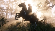 RDR2_Screenshot_083