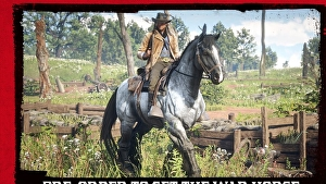 Red Dead Redemption 2: nell