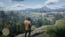 Red_Dead_Redemption_2__10_