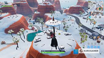 fortnite_sundial_oversized_cup_coffee_giant_dogs_head_location_1
