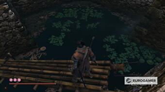 sekiro_treasure_carp_scales_7_a