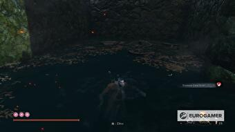 sekiro_treasure_carp_scales_7_d