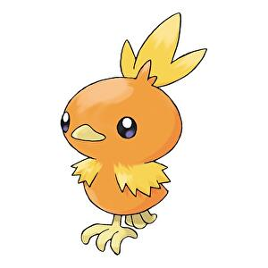 pokemon_go_community_day_torchic_1