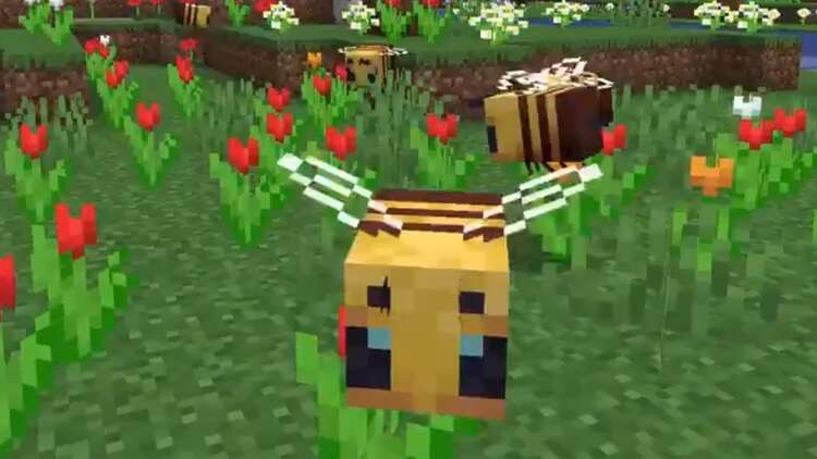 Minecrafts Latest Java Update Adds Bees Hives And Honey