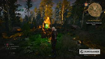 witcher_3_places_of_power_locations_1_wo_axii
