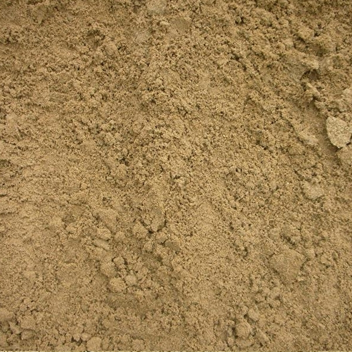 I never got to play that game Sega made out of sand