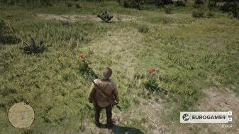 red_dead_redemption_2_the_ends_of_the_earth_3