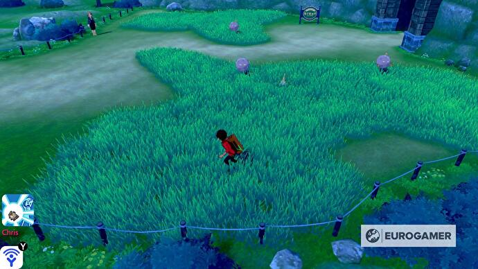 pokemon_sword_shield_motostoke_outskirts