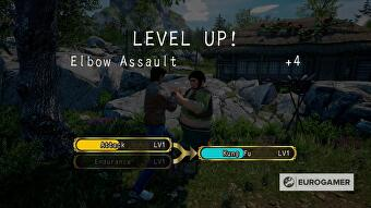 shenmue_3_fighting_tips_endurance_attack_kung_fu_6