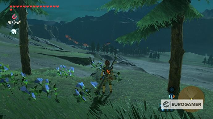 The_Legend_of_Zelda_Breath_of_the_Wild_1