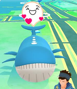 pokemon_go_buddy_adventure_1
