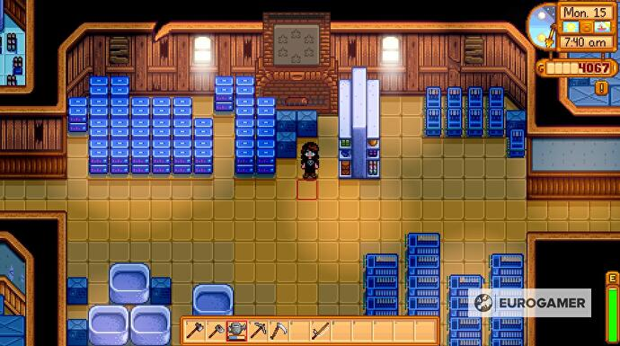 Stardew_Valley_Community_Center_12