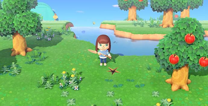 Animal_Crossing_New_Horizons_Tools_11